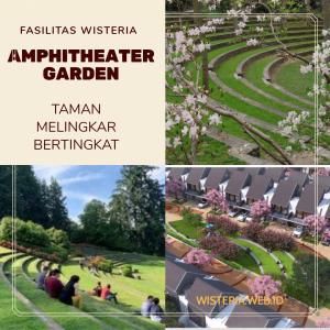 Wisteria Amphitheater Garden