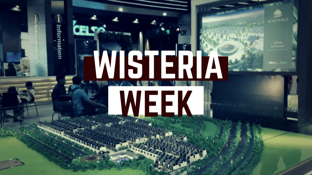 Video Event Wisteria Week 16-17 Nov 2019
